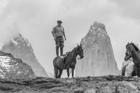 puma_tour-torres_del_paine-photgraphy-photo_tour-rental_natales-Patagonia